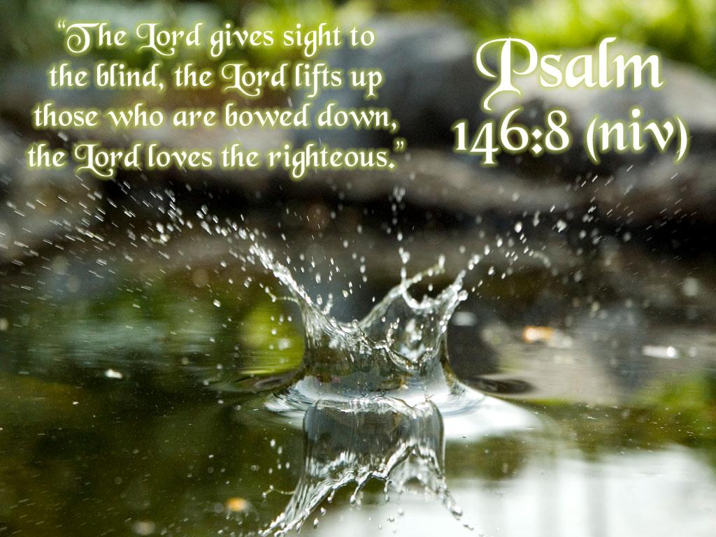 Psalm 146 « Sara's Musings