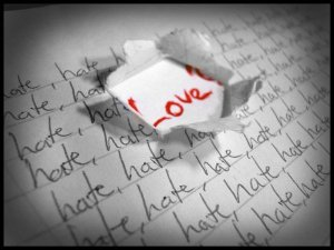 LOVE-vs-HATE-pic2