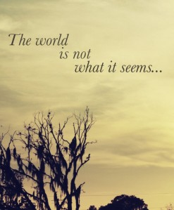 the world is not what it seems