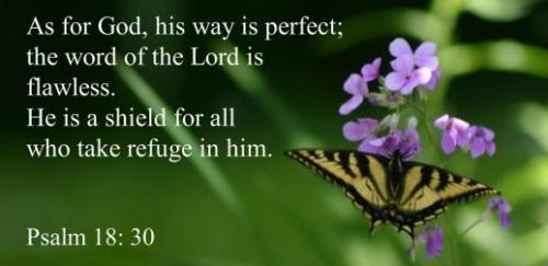 Psalm 18v30